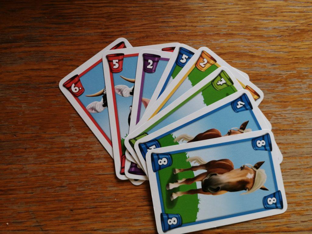 Die Karten: Verschiedene Tiere & verschiedene Farben machen das Spiel einfacher.